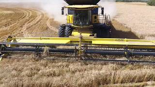 Download Winter wheat harvest 2016. Canada. KF Kambeitz Farms (4K video). Video