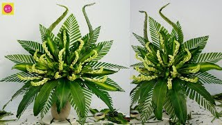 Download HOW TO DO Flower Arragement Polianthes Tuberosa ,Dracaena fragrans?141 Video