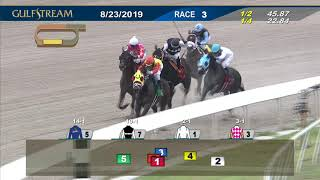 Download Gulfstream Park August 23, 2019 Race 3 Video