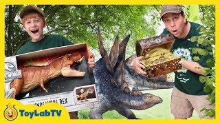 Download Dinosaur Toy Treasure Hunt! Surprise Jurassic World Fallen Kingdom Toys & Super Colossal T-Rex Video