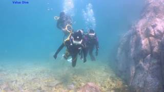 Download 16년 08월 07일 오픈워터 해양실습 Video