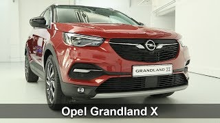 Download Présentation de l'Opel Grandland X Video