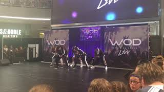 Download The Lab dancing at the Mall Of America!! Video