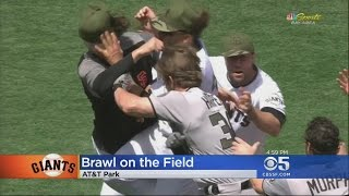 Download GIANTS BRAWL: Bad feelings between SF's Hunter Strickland and Nats Bryce Harper boil over into a fis Video