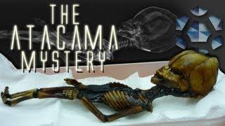Download The Atacama Humanoid Video