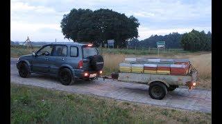 Download Pszczoły jadą na wycieczkę Video