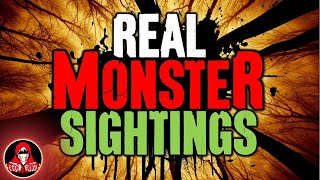 Download 4 REAL Monsters in the Forest - Darkness Prevails Video