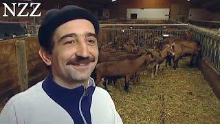 Download Junge Bauern, neue Märkte - Dokumentation von NZZ Format (2007) Video