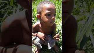 Download Menino cagando ( pai pega o papel ) muito engraçado Video