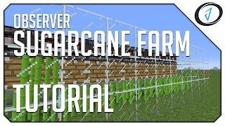 Download ►Minecraft: OBSERVER SUGARCANE FARM! (MC Tutorial) ◄ | iJevin Video