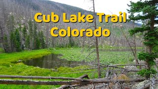 Download Rocky Mountain National Park - Cub Lake Trail Video