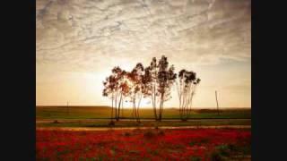 Download Tongan Love Song Video