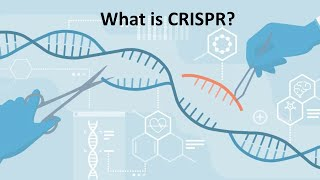 Download Quick learning of CRISPR/Cas9 Video