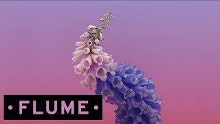 Download Flume - Wall Fuck Video