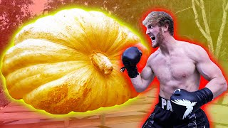 Download LOGAN PAUL VS. THE WORLD'S BIGGEST PUMPKIN! Video