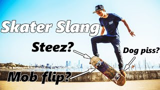 Download Common Skateboarding Terms and Slang - EXPLAINED Video