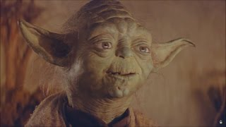Download 1 hour of Yoda - Rockin' and Rollin' Video