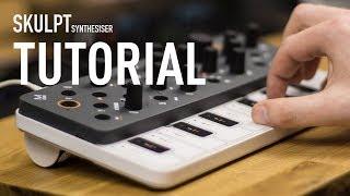 Download Modal Electronics SKULPT synthesiser Walk Through Tutorial Video