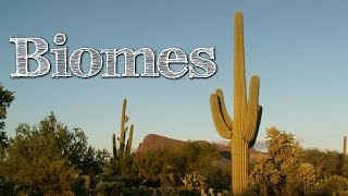 Download Biomes of the World for Children: Oceans, Mountains, Grassland, Rainforest, Desert - FreeSchool Video