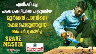 Download WOW! Vava Suresh saves a Cobra caught in a mouse trap | Snakemaster | Kaumudy TV | Latest Episode Video