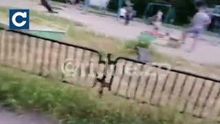 Download У Запоріжжі знайшли зарості конопель Video