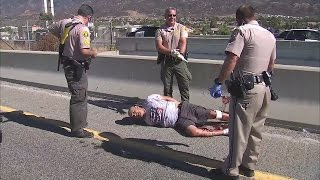 Download Los Angeles police tackle pursuit suspect before jumping from freeway overpass Video