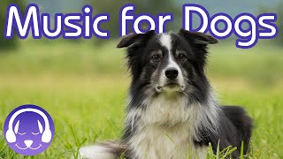 Download 15 Hours of Soothing Dog Therapy Music - INSTANTLY Calm My Dog Down! (TESTED) Video