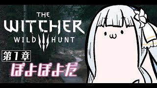 Download 💙【Witcher 3】美人な娘を探す父と旅をする【ViViD所属】 Video