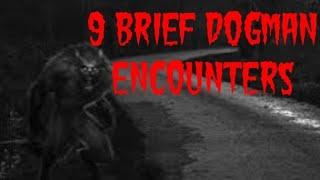 Download 9 BRIEF DOGMAN ENCOUNTERS Video