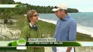 Download BELIZE on MSNBC: Preserving The Coral Reefs: Belize Barrier Reef Video