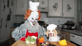 Download Pennywise & Dog Cook Dinner Together: Funny Dog Maymo Video