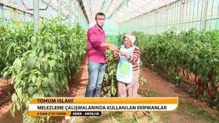 Download A'DAN Z'YE TARIM - TOHUM ISLAHI Video