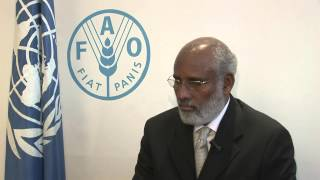 Download FAO's Director General meets Somalia's Minister for Agriculture Video