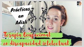 Download Terapia ocupacional en DIVERSIDAD FUNCIONAL · Prácticas en ADISLI Video