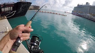 Download The Bermuda Fishing Experience! Video