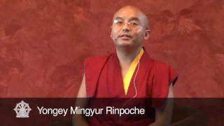 Download Losing everything without giving up ~ A Teaching by Yongey Mingyur Rinpoche Video