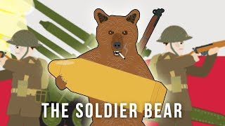 Download The Soldier Bear (Strange Stories of World War II) Video