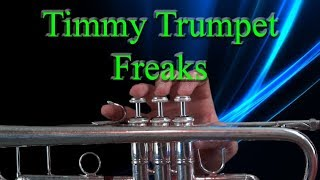 Download How to play Freaks by Timmy Trumpet on Trumpet Video