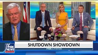 Download Gingrich: Battle With Trump Over Border Wall Could Be 'Very Expensive' for Dems Before Midterms Video