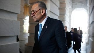 Download There's been one shutdown this year, Chuck Schumer did it: Rep. Jordan Video