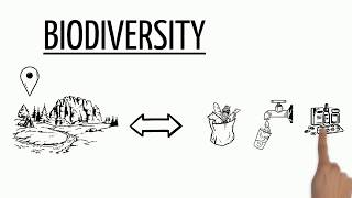 Download Biodiversity Explained Video