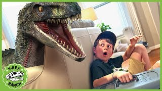 Download Dinosaurs & Animals for Kids! Giant Dinosaur vs Mystery Pet with Wildlife Animal Adventure Park Zoo Video