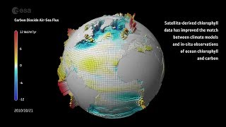 Download Carbon dioxide ocean–atmosphere exchange Video