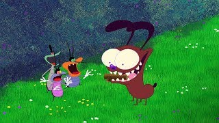 Download (NEW SEASON 6) Oggy and the Cockroaches 🐶 CUTE LITTLE PUPPY 🐶 (S06-E06) Video