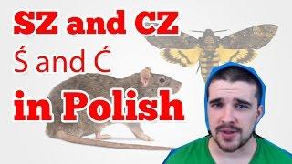 Download Polish sz cz ś ć Video