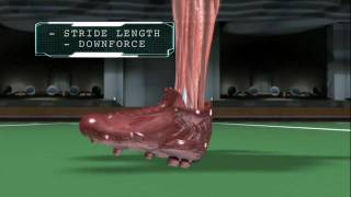 Download Sports Science: Marcus Trufant Vs. Our Average Joe Video