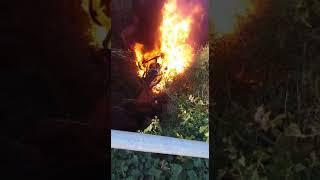 Download Accident d'un camió carregat de gasoil a Guardiola de Font-rubí Video