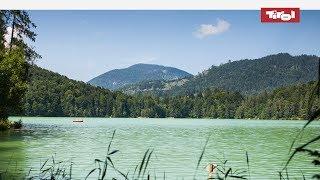 Download Die schönsten Badeseen & Bergseen in Tirol, Österreich im Sommer Video