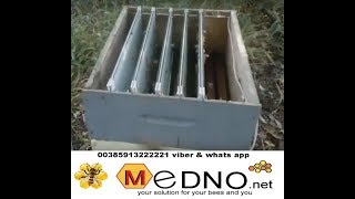 Download Bee Venom Collector vertical model collection of bee venom apitoxin at night Video