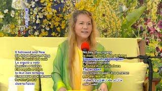 Download MASTER CHING HAI (2017) - P2 LOVE AT HSIHU (MOON FESTIVAL) Video
